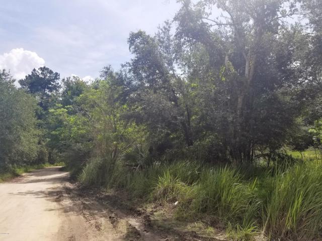 4401 NE 132nd Avenue, Silver Springs, FL 34488 (MLS #542598) :: Bosshardt Realty
