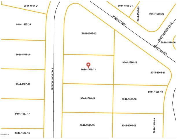Lot 13 Sequoia Loop Trace, Ocala, FL 34472 (MLS #542622) :: Pepine Realty
