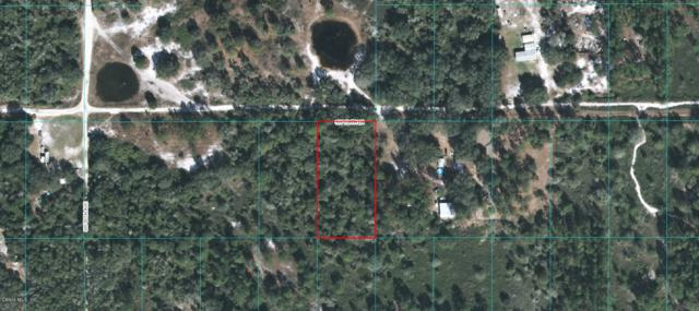 0 SW 158 Lane, Dunnellon, FL 34432 (MLS #542704) :: Realty Executives Mid Florida