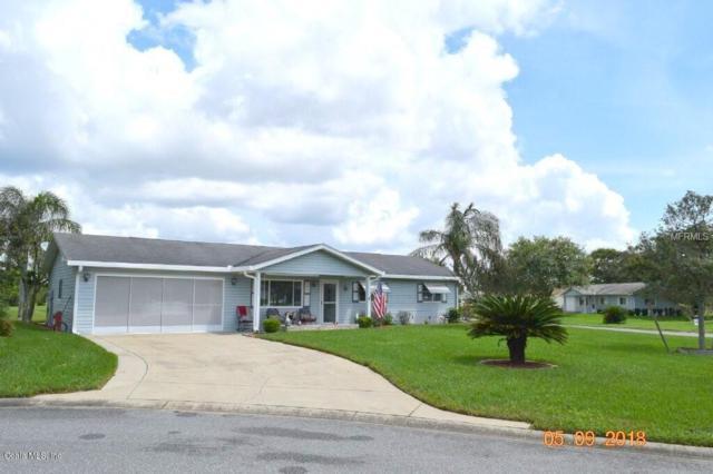 10479 SE 175th Place, Summerfield, FL 34491 (MLS #542753) :: Pepine Realty