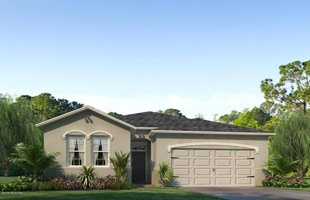 9061 SW 60th Terrace Road, Ocala, FL 34476 (MLS #542850) :: Bosshardt Realty