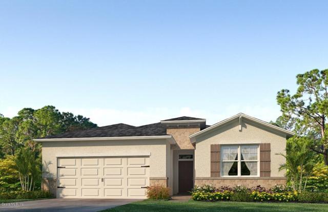 9056 SW 60th Court Road, Ocala, FL 34476 (MLS #542854) :: Realty Executives Mid Florida