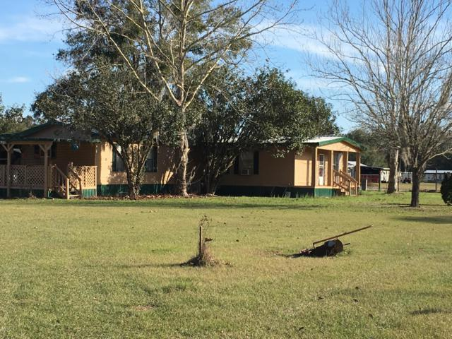 16900 SE 95th Street Road, Ocklawaha, FL 32179 (MLS #542874) :: Bosshardt Realty