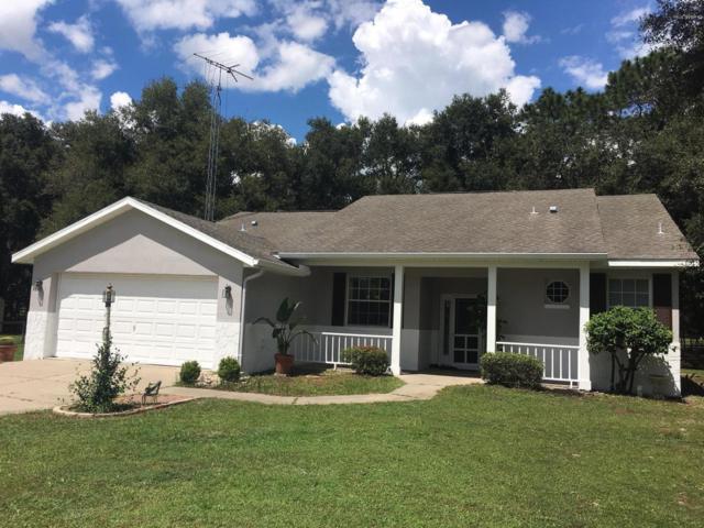 12697 SW 112th Street Road, Dunnellon, FL 34432 (MLS #542928) :: Bosshardt Realty
