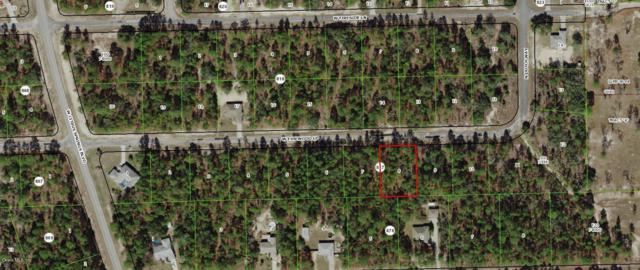 3872 W Firewood Loop, Dunnellon, FL 34433 (MLS #542981) :: Thomas Group Realty