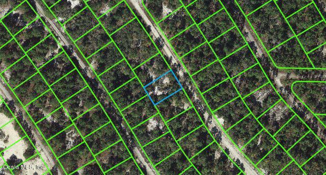 520 Summer Hill Drive, Lake Placid, FL 33852 (MLS #543122) :: Thomas Group Realty