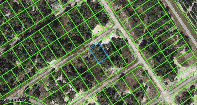 455 Blackbird Avenue, Lake Placid, FL 33852 (MLS #543127) :: Pepine Realty