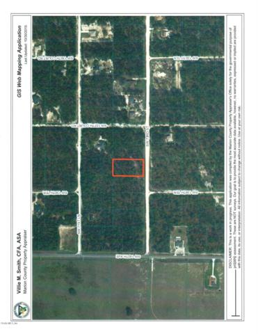 00 SW 73rd Street, Ocala, FL 34481 (MLS #543207) :: Realty Executives Mid Florida