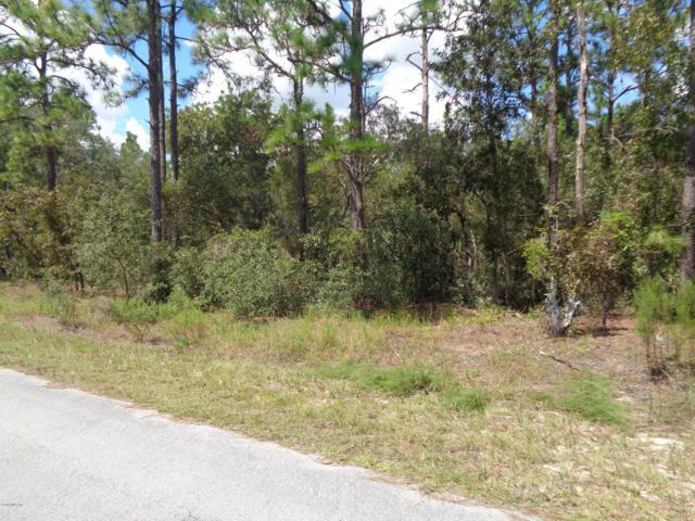 8 SW Edgewater Boulevard, Dunnellon, FL 34431 (MLS #543232) :: Pepine Realty