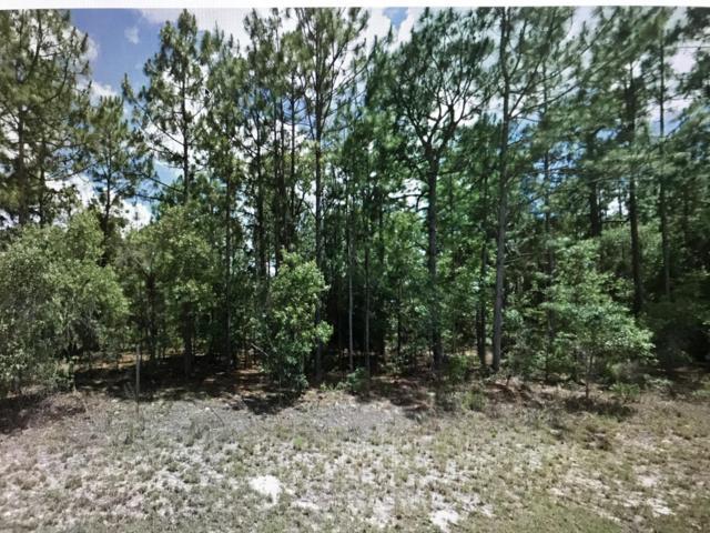 1508 W Donner Drive, Citrus Springs, FL 34434 (MLS #543285) :: Pepine Realty
