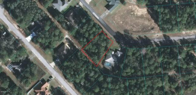 0 SW 169th Place, Ocala, FL 34473 (MLS #543289) :: Realty Executives Mid Florida