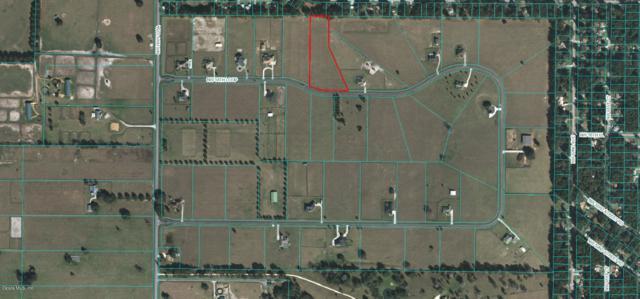 TBD NW 54 Loop, Ocala, FL 34482 (MLS #543312) :: Realty Executives Mid Florida