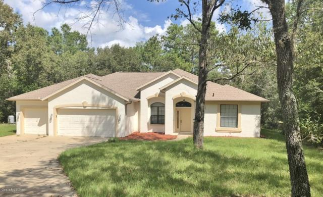 20365 SW 86th Loop, Dunnellon, FL 34431 (MLS #543323) :: Thomas Group Realty