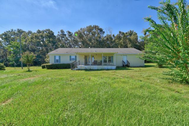 4250 SE 150th Street, Summerfield, FL 34491 (MLS #543339) :: Bosshardt Realty