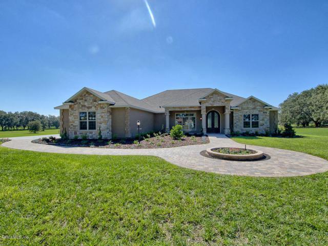 796 SE 116TH PLACE Road, Ocala, FL 34480 (MLS #543472) :: Thomas Group Realty