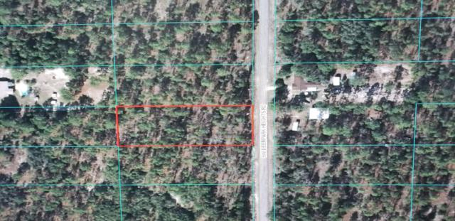 0 SW Deer Park Heights Road, Dunnellon, FL 34430 (MLS #543563) :: Pepine Realty