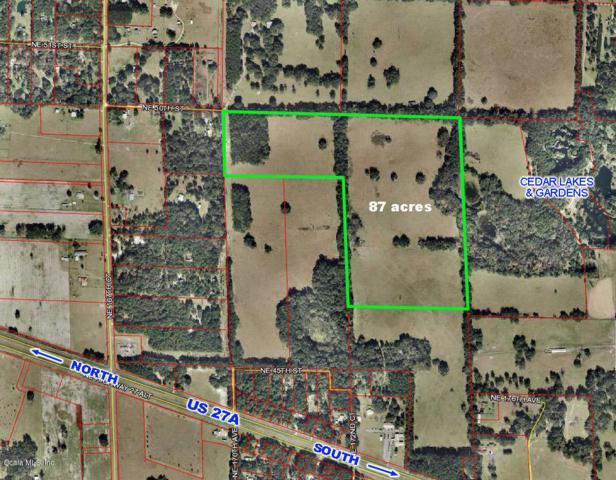 17431 Highway 27 Alternate, Williston, FL 32696 (MLS #543623) :: Realty Executives Mid Florida