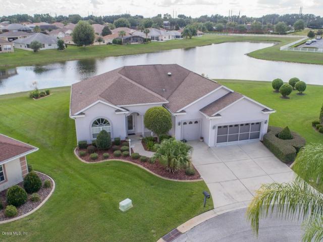 17351 SE 111th Avenue, Summerfield, FL 34491 (MLS #543756) :: Thomas Group Realty