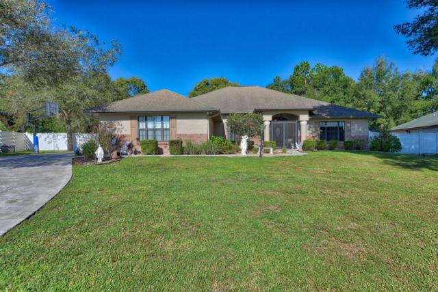 5291 SW 103rd Loop, Ocala, FL 34476 (MLS #543797) :: Bosshardt Realty