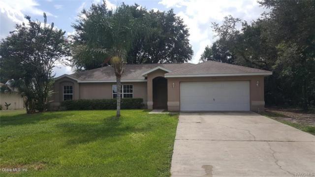 15710 SE 93rd Avenue, Summerfield, FL 34491 (MLS #543814) :: Bosshardt Realty