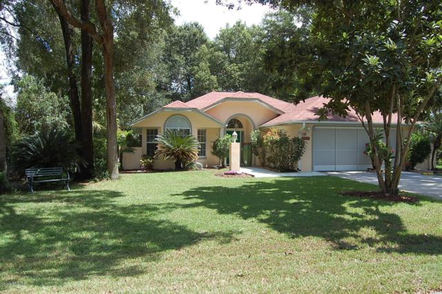 9671 SW 190th Terrace Road, Dunnellon, FL 34432 (MLS #543871) :: Bosshardt Realty