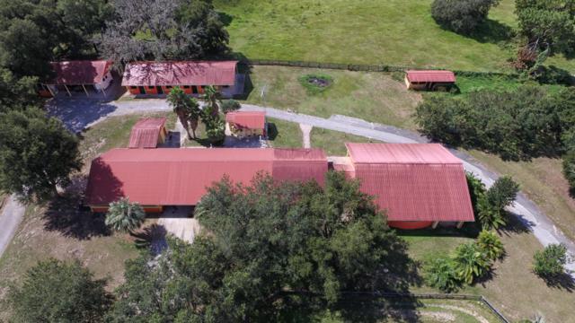 16921 SE 19th Court, Summerfield, FL 34491 (MLS #544122) :: Bosshardt Realty