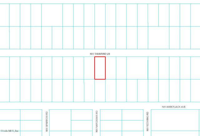 0 NW Tamarind Lane, Dunnellon, FL 34431 (MLS #544338) :: Bosshardt Realty