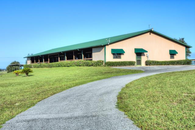 7600 SW 140th Avenue, Dunnellon, FL 34432 (MLS #544406) :: Realty Executives Mid Florida
