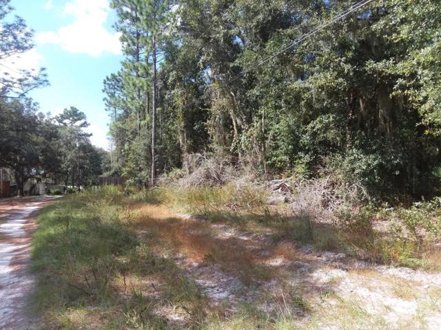 0 NE 207 Lane, Fort Mccoy, FL 32134 (MLS #544422) :: Bosshardt Realty
