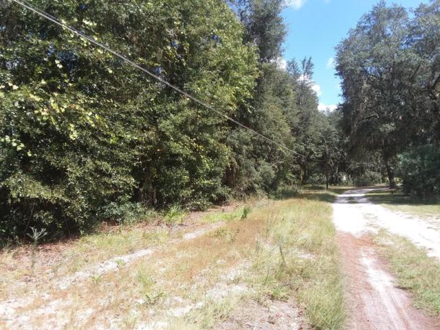 0 NE 207 Lane, Fort Mccoy, FL 32134 (MLS #544424) :: Bosshardt Realty