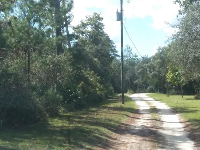 0 NE 200 Place, Fort Mccoy, FL 32134 (MLS #544426) :: Bosshardt Realty