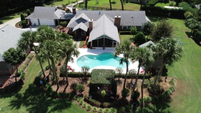 5025 SE 14th Place, Ocala, FL 34471 (MLS #544460) :: Bosshardt Realty