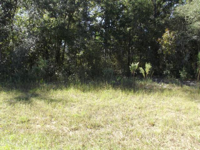2138 W G. Martinelli Boulevard, Citrus Springs, FL 34434 (MLS #544678) :: Bosshardt Realty