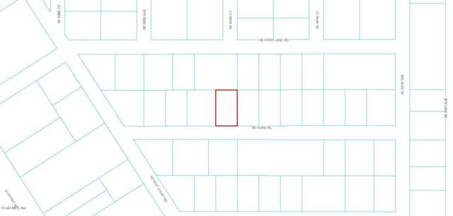 0 SE 152nd Place, Summerfield, FL 34491 (MLS #544842) :: Bosshardt Realty