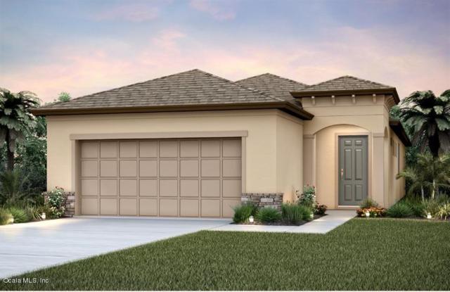 9729 SW 63rd Loop Loop, Ocala, FL 34481 (MLS #544846) :: Realty Executives Mid Florida