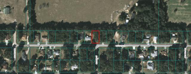 8645 SE 155th Place, Summerfield, FL 34491 (MLS #544877) :: Bosshardt Realty