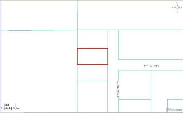 lot 2 SW 177th Court, Dunnellon, FL 34432 (MLS #544900) :: Realty Executives Mid Florida