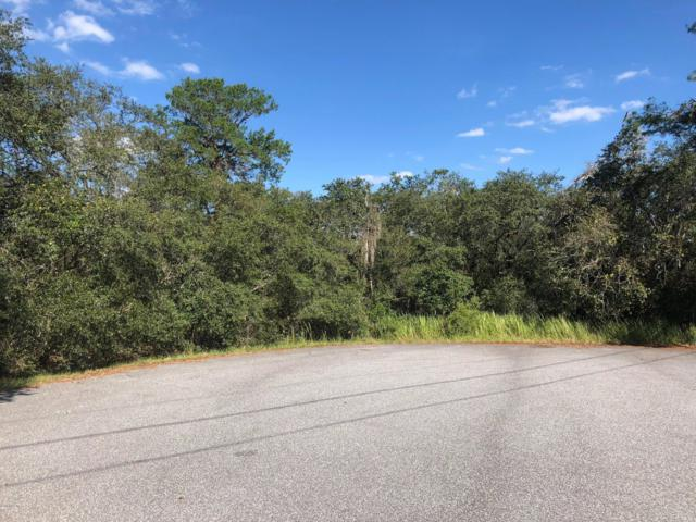 TBD Olive Drive, Ocala, FL 34472 (MLS #544944) :: Thomas Group Realty