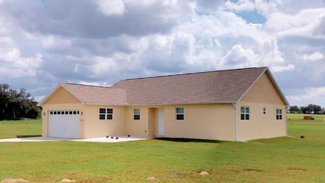 21980 SW 3rd Lane, Dunnellon, FL 34431 (MLS #545003) :: Realty Executives Mid Florida