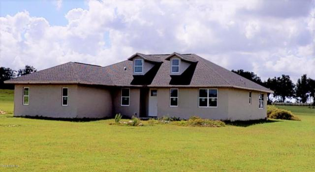 21990 SW 6th Lane, Dunnellon, FL 34431 (MLS #545004) :: Realty Executives Mid Florida