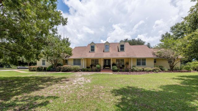 6887 NE 61st Avenue Road, Silver Springs, FL 34488 (MLS #545103) :: Bosshardt Realty