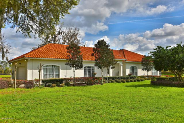 15221 NW 112th Place Road, Morriston, FL 32668 (MLS #545111) :: Thomas Group Realty