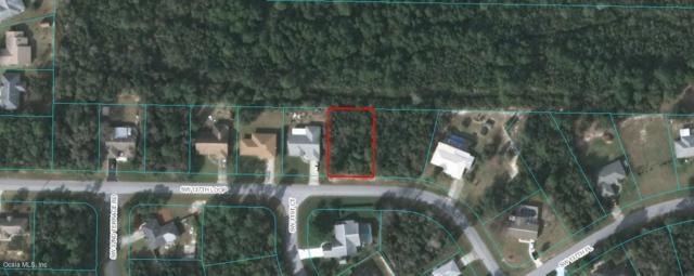 0 SW 137th Loop, Ocala, FL 34473 (MLS #545131) :: Realty Executives Mid Florida