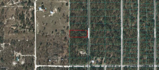 Lot 12 NW Ridgeview Rd, Dunnellon, FL 34431 (MLS #545136) :: Realty Executives Mid Florida