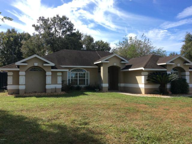 3951 SE 219 Avenue, Morriston, FL 32668 (MLS #545159) :: Bosshardt Realty