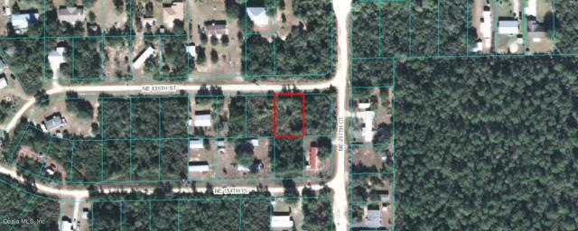 0 NE 135 Street, Salt Springs, FL 32134 (MLS #545245) :: Pepine Realty