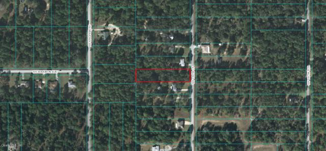 00 SW 199TH Court, Dunnellon, FL 34431 (MLS #545336) :: Thomas Group Realty
