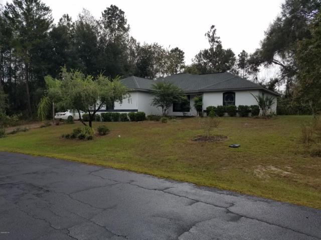 13052 NE 7th Loop, Silver Springs, FL 34488 (MLS #545442) :: Bosshardt Realty