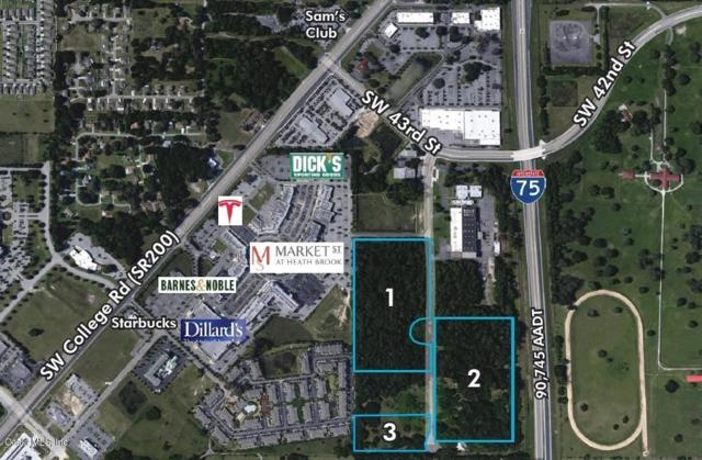 4400 SW 40th Avenue, Ocala, FL 34474 (MLS #545573) :: Bosshardt Realty