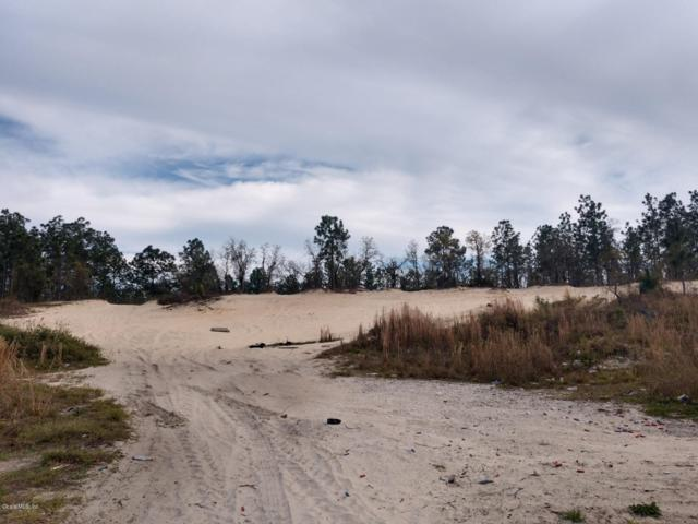 TBD SW 99th Lane, Dunnellon, FL 34432 (MLS #545853) :: Realty Executives Mid Florida